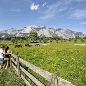 Bei allen geführten Wanderungen am Naturpark Dobratsch Rundwanderweg steht das Wandern und Erleben an erster Stelle.