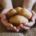 Die Kartoffel gehört zu den wichtigsten Grundnahrungsmitteln der Welt und hat maßgeblich dazu beigetragen, dass es in unseren Breiten keine Hungersnöte mehr gibt